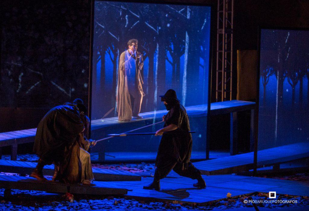 Detalle de la escenografía fija y digital en Eco y Narciso.