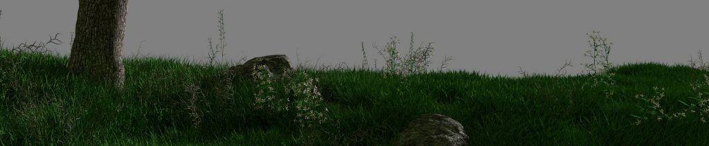 eco y narciso test hierba