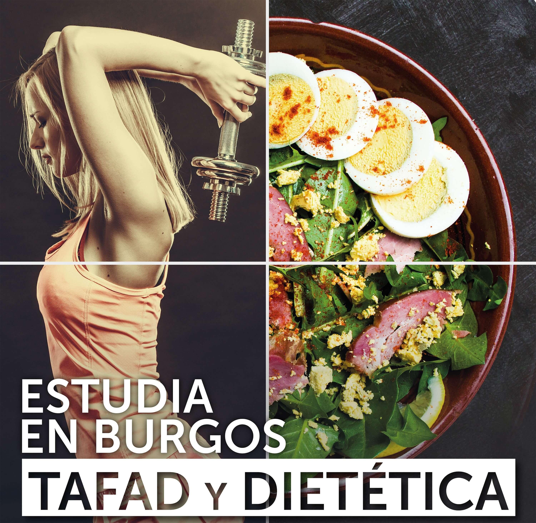tafad_web
